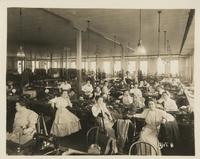 Lattin Bloomfield and Co Skirt Manufacturers 1910s