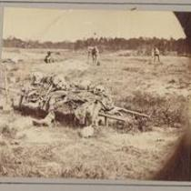 Collecting remains of the dead after the war. Cold Harbor, Va. June 6, 1864.