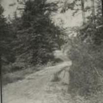 Wade 1870s