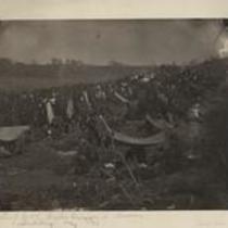 Brook's division in Bivouac
