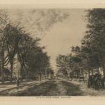 Euclid Ave General 1890s