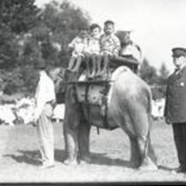 Children riding elephant at zoo