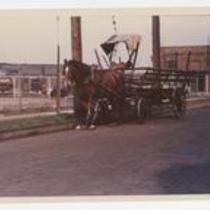 Horse Drawn Vehicles Barrel Wagon 1970s